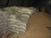 Отруби пшеничные,  Жмых(Протеин 28-32%),  Масло(1,  2 сорт) 2480486
