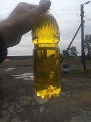 Продам масло подсолнечное нерафинрованное,  сыродавленное
